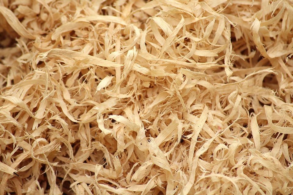 trucciolo di legno